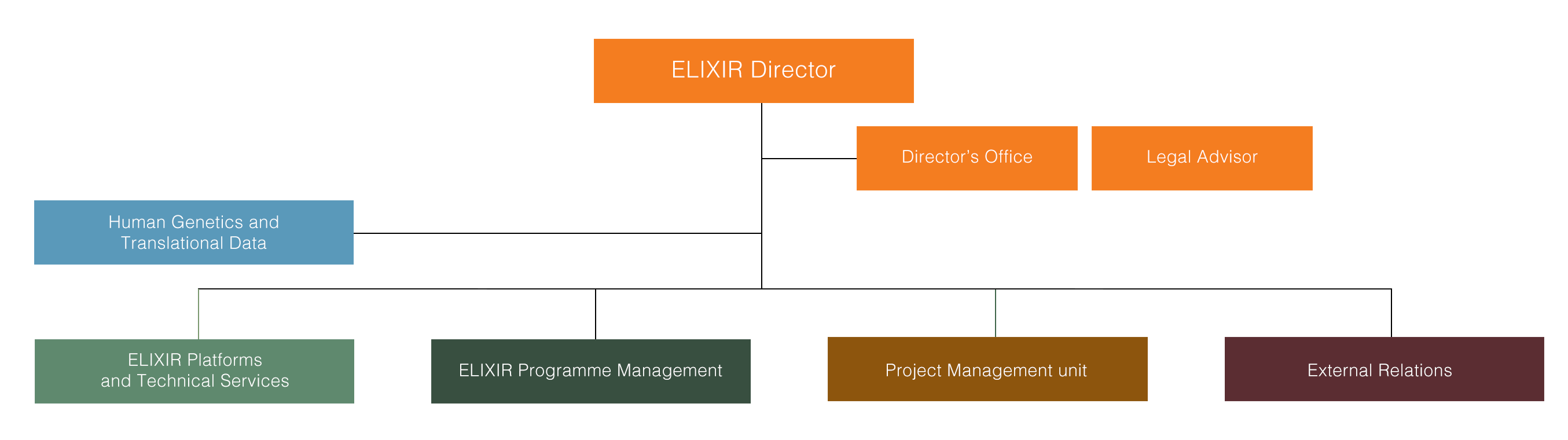 Organogram of the ELIXIR Hub