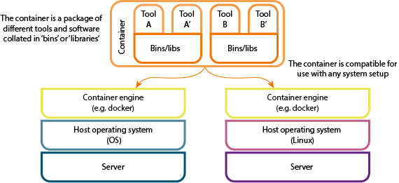 Diagram showing what a container is made of (tools and bins/libraries) and how it is compatible with different operating systems (e.g. Mac OS or Linux)