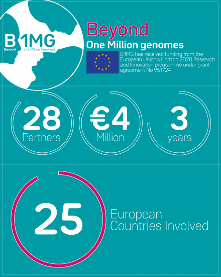 B1MG Project in numbers