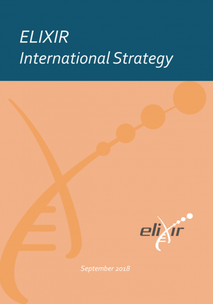 cover-intrnational strategy