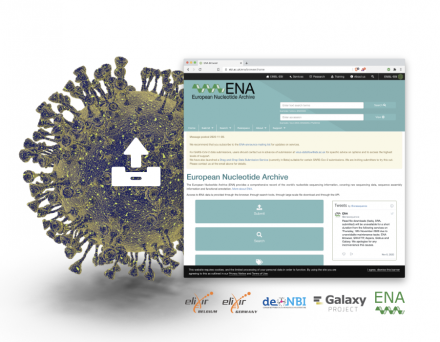 ENA page for submitting data with coronavirus icon